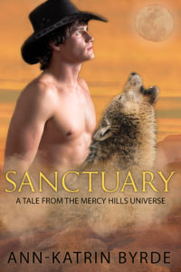 Book Cover: Sanctuary