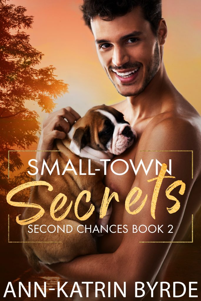 Book Cover: Small Town Secrets